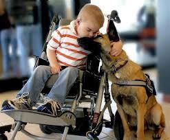 emotional support animal center
