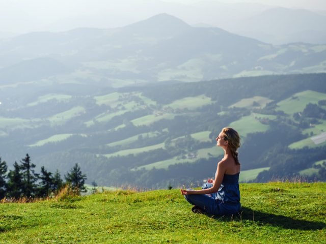 What are the Diverse Domains of Meditation