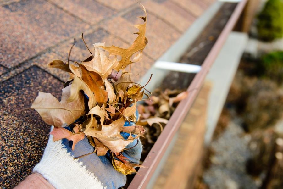 Gutter Maintenance Tips For Fall