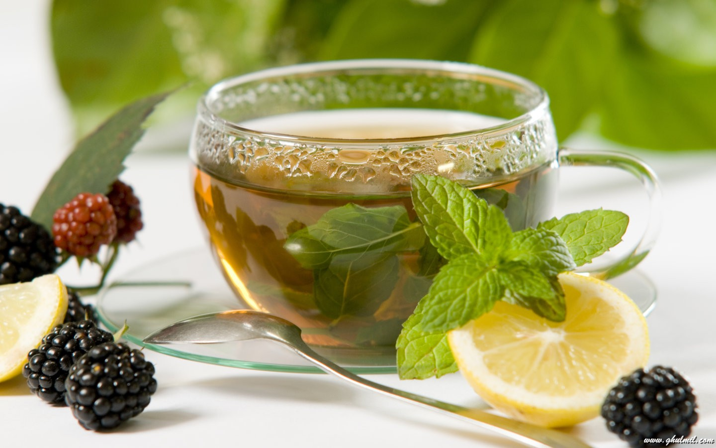 5 Ways To Drink Tea To Lose Weight