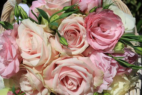 5 Wedding Themes For A Spring Wedding
