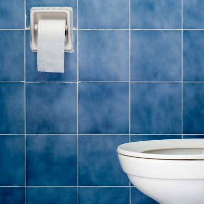 Tips For Fixing A Clogged Toilet
