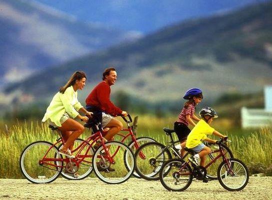 Regina Kurrasch Advocates Stationary Cycling To Get Rid Of Osteoarthritis