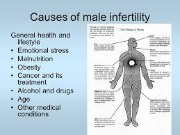 Medical and Lifestyle Conditions That Leads To Male Infertility